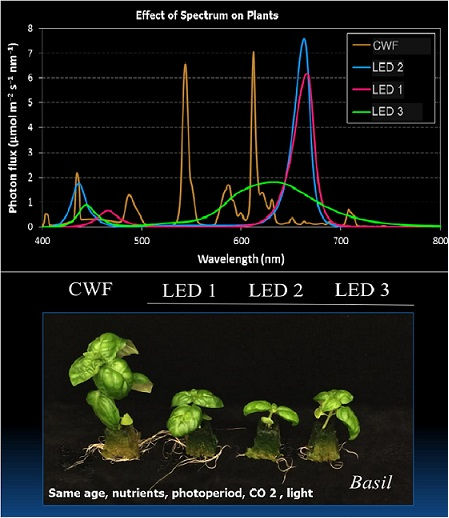 Effect of spectrum on plant-01.jpg