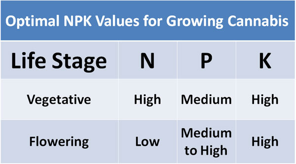 optimal-npk-values-growing-cannabis.jpg