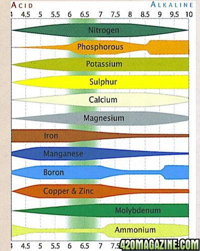 ph chart.jpg
