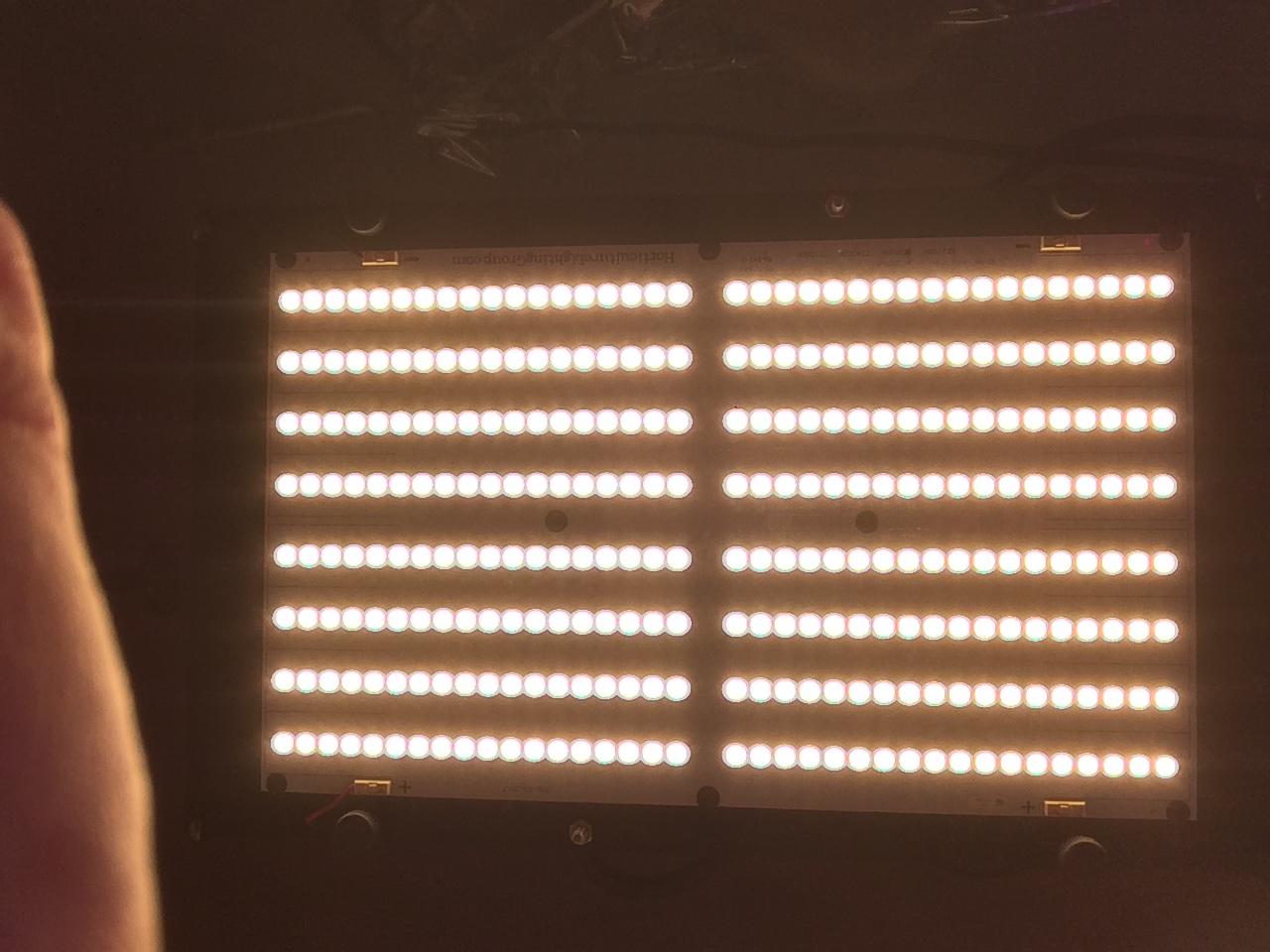 Quantum 135w.JPG