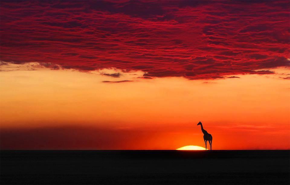 Sunset In Africa.jpg