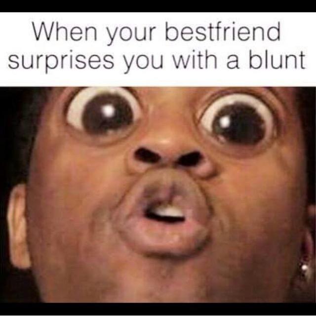 Surprise-Blunt.jpg