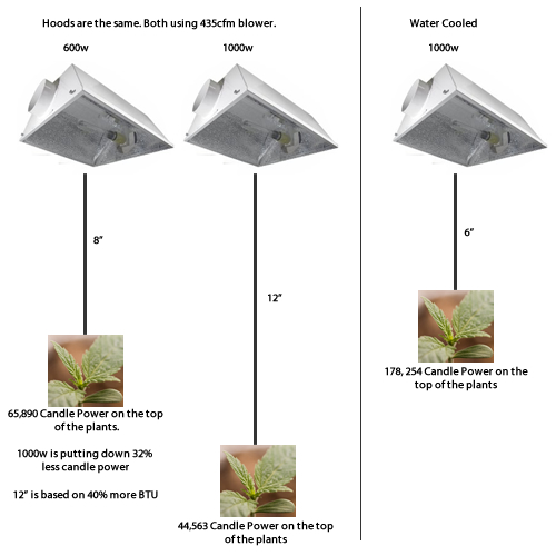 4x4 grow tent setup related keywords suggestions 4x4 for Room design 4x4